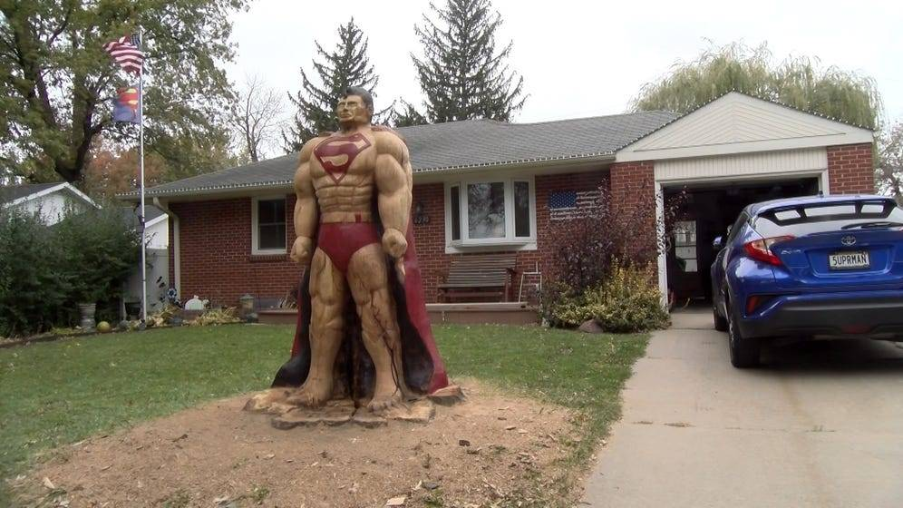 Superman-Tree-Carving.jpg